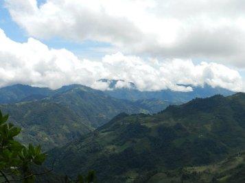 Guate 221